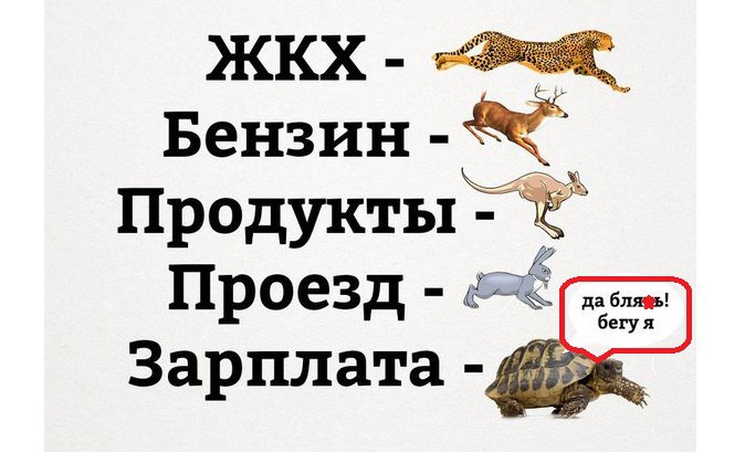 X7NeI0tVwSA.jpg