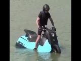 Скутер-катер.