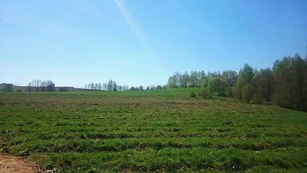 Имено эта часть #весна нравится больше всего. Молодая э, сочная зелень на лугу. #природа #Беларусь