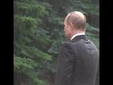 Путин и Дождь. Символично.