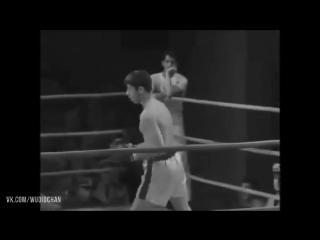 Самый позитивный боксер//STRONG DIVISION