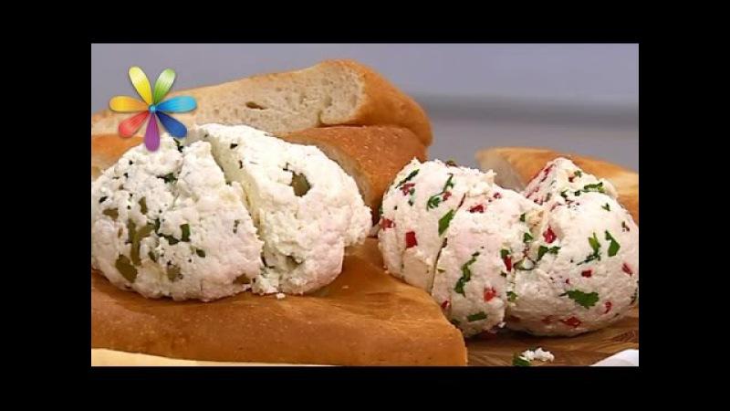 Адыгейский сыр рецепт поэтапно сырных ролов – Все буде добре. Выпуск 923 от 30.11.16