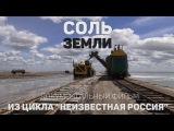 Соль земли (документальный фильм)
