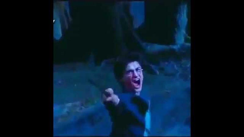 Гарри Поттер.......Дай посрать! Прикол