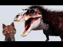 Наука для детей Динозавры Горгозавр Про динозавров для детей