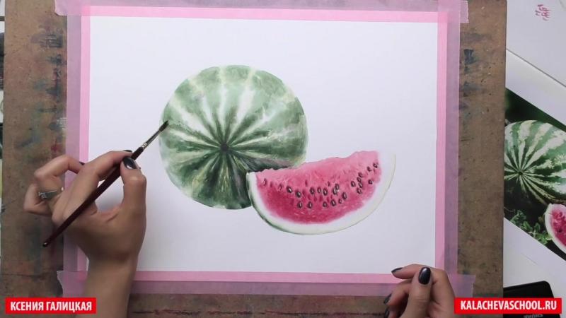 Ксения Галицкая — «Сочный арбуз»