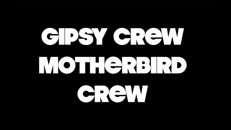Party Favor 24.08.17 by GipsyMotherBird CrewZ