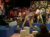 Звуки Му - Серый Голубь 1987