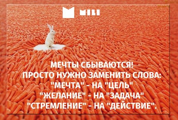 #милимили #мили #микрозаймы #милимфо #МФО