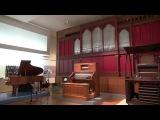 Wolfgang Amadeus Mozart Ouvert