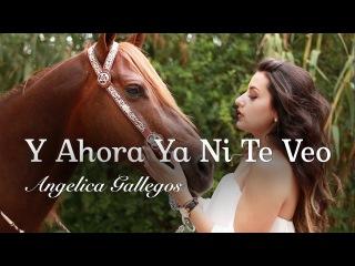 Y Ahora Ya Ni Te Veo / Angelica Gallegos