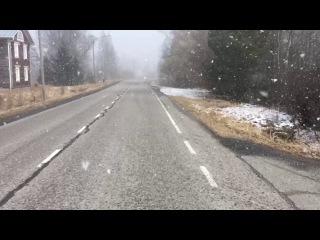 Snowy spring day. Finland
