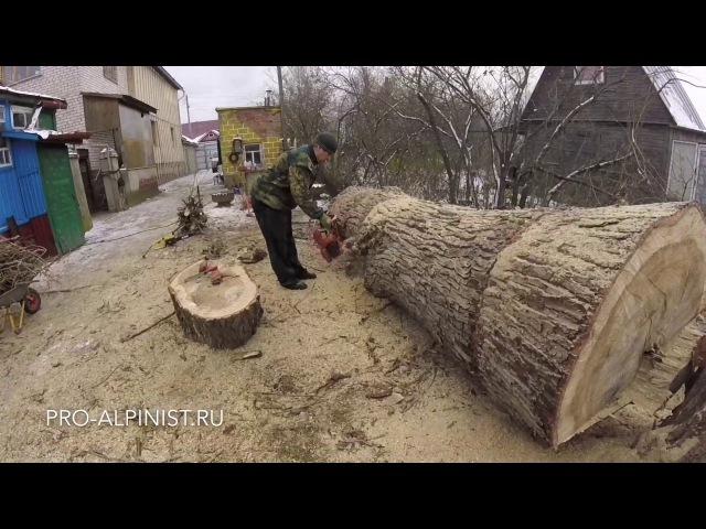 Сложное и опасное удаление дерева частями.