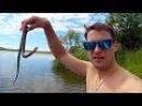 Что Скрывается в Водоемах Рязанской Области. Самая Дорогая Рыбалка в Жизни