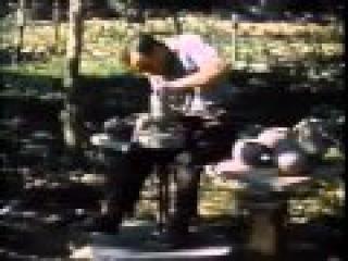 Кремний Живое в неживом Фильм СССР Кремне органические соединения