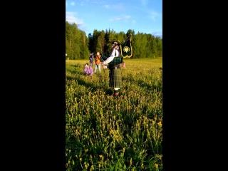 Волынка в полях