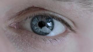 Технология отслеживания взгляда The Eye Tribe Tracker