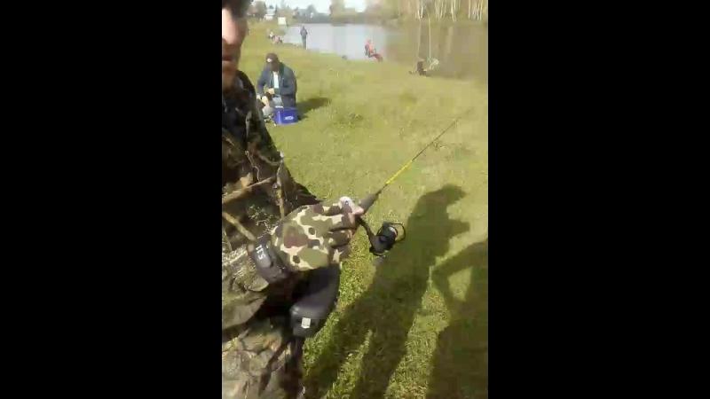 ◄ Ultra Light Fishing Clu... - Live
