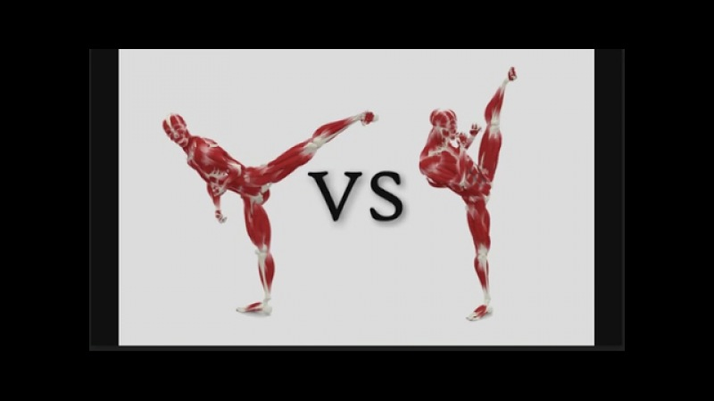 Side Kick Tutorial Anatomy Muscle Flexibility Strength Diagram Good vs Bad