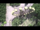 🎥 Чернобыль 30 лет спустя / Chernobyl 30 Years On