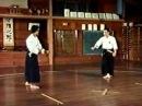 Nunchaku sho kumite. Ryukyu kobujutsu hozon shinkokai.