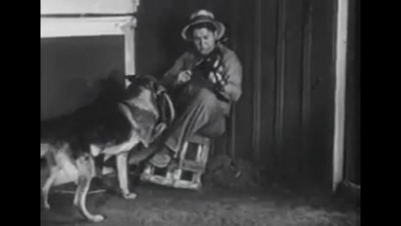 Т/С Приключения Рекса и Ринти: End of the Road 7 серия (1935г)