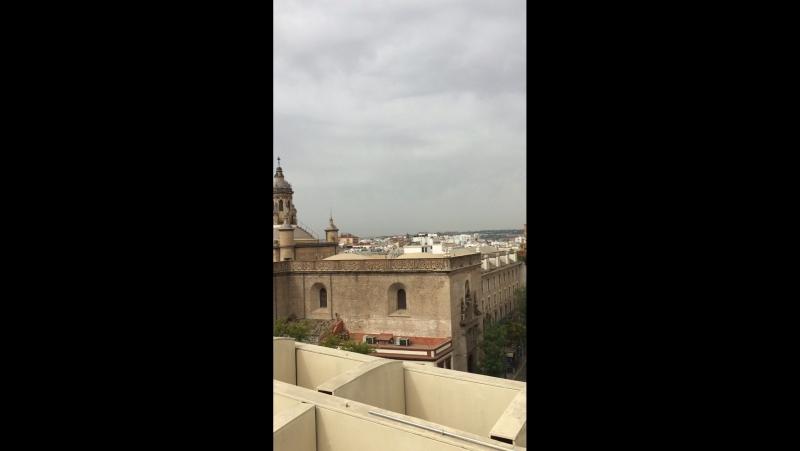 Metrópoli parasol (Sevilla)🌫