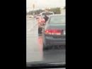 Доберман ловит капли дождя