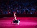 Цирк Корона Анжелика