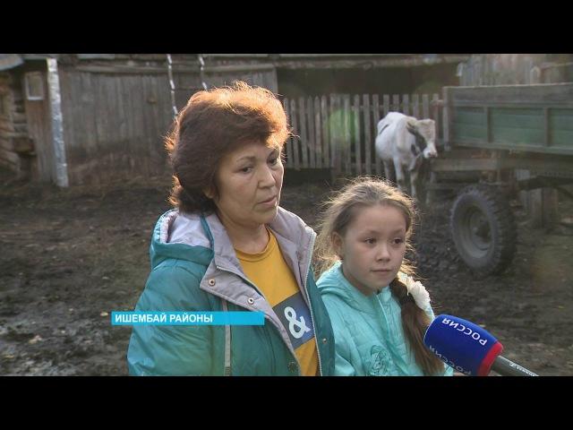 Ишембай районында айыуҙар халыҡтың мал-тыуарын ҡыра