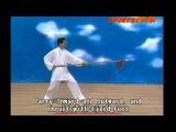 Di Guoyong - Xingyi Five Element Spear (Qiang) Instructional DVD