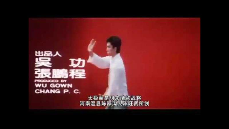 Молодой Донни Йен выполняет форму тайцзицюань