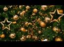 H3, Тася Орлова и Александра Борисова - Поздравление с Новым Годом!