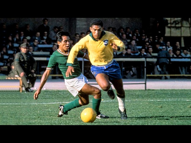 Garrincha ● Best Skills Dribbles Ever