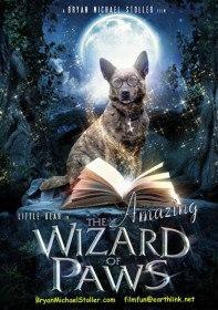 Волшебные лапы / Удивительный волшебник из Лапы / The Amazing Wizard of Paws (2015)