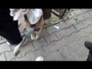 Ева на прогулке