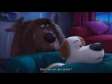 Pets - Тайная жизнь домашних животных (2016)