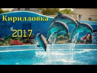Фантастическое выступление дельфинов дельфинарий Оскар Кирилловка 2017 Dolphins Kirillo...