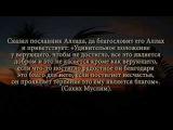 Шейх Ибн Усеймин - ПРЕВОСХОДСТВО ВЕРУЮЩИХ. Тафсир 97 аята из суры