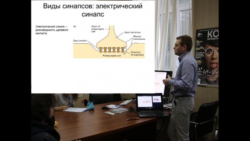 Нейромедиаторы - Денис Кудрявцев - Лекторий Neocortex - цикл Нейробиология (№3)