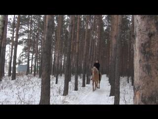 Галопом в лесу на чудо-коне Водопаде