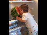 Хлопнула дверца у холодильника....захожу и вижу это)))))