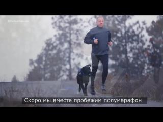 Трогательная история о том, как пес из приюта спас человека от смерти