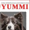 Yummi-сухой корм для кошек и собак (КАЗАНЬ)
