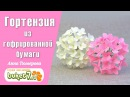 Гортензия из гофрированной бумаги ☆ Цветы из бумаги ☆ Поделки из бумаги ☆ Цветы своими руками