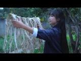 李子柒 Семь слив Молчаливая китайская домохозяйка