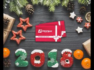 Новогодняя распродажа Profmax