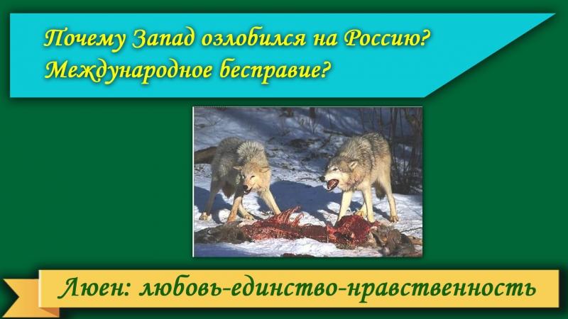 Почему Запад озлобился на Россию? Международное бесправие? Заставка: голодные псы рвут мясо.