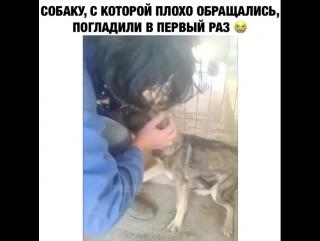 почему плохо клюет на волхове