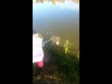 Рыбалка в Стремилово 10.10.17 (1)